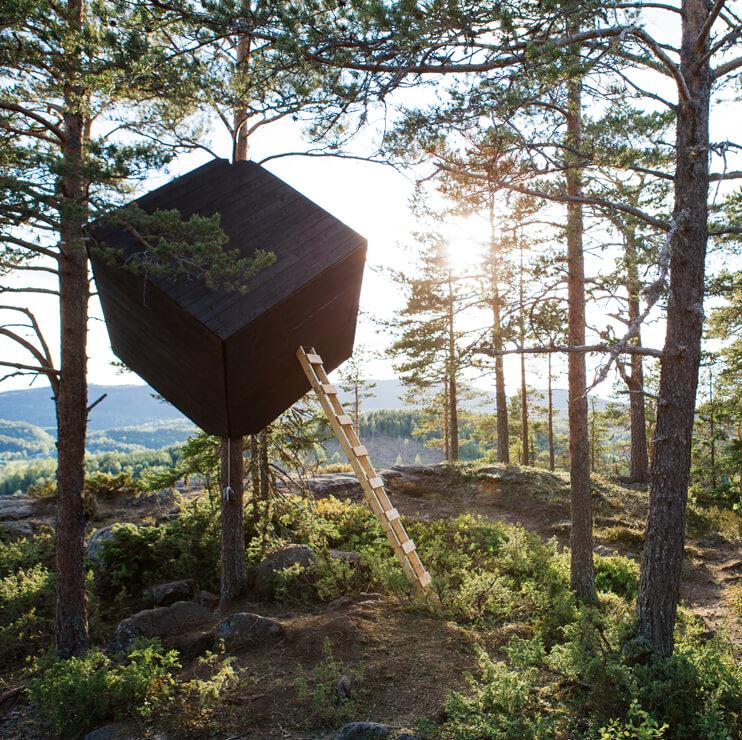 The Tree Cube Arknat